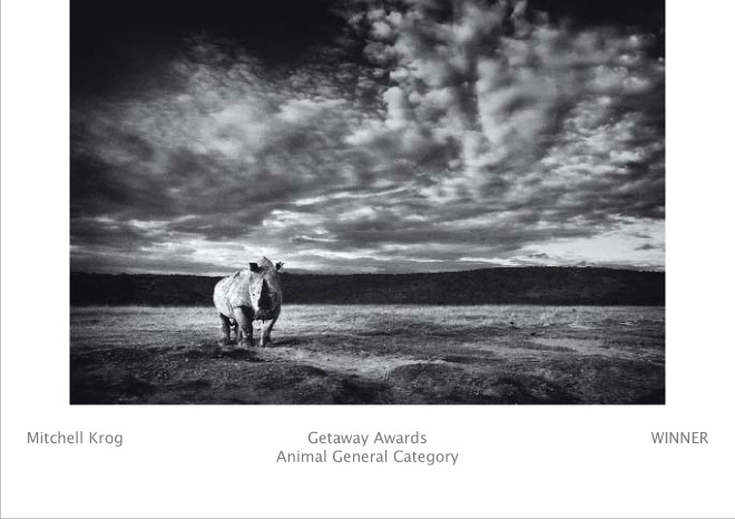 Wildlife Photography Awards - At The Mercy of Men - Last Rhino - Winner (Animal General - AG) Fujifilm Getaway (Image REF: KES5721)