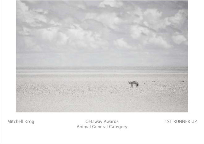 Getaway Fuji Wildlife Photography Awards - Lone Jackal Etosha Pan - First Runner Up (Animal General - AG) (Image REF: NAX7961)