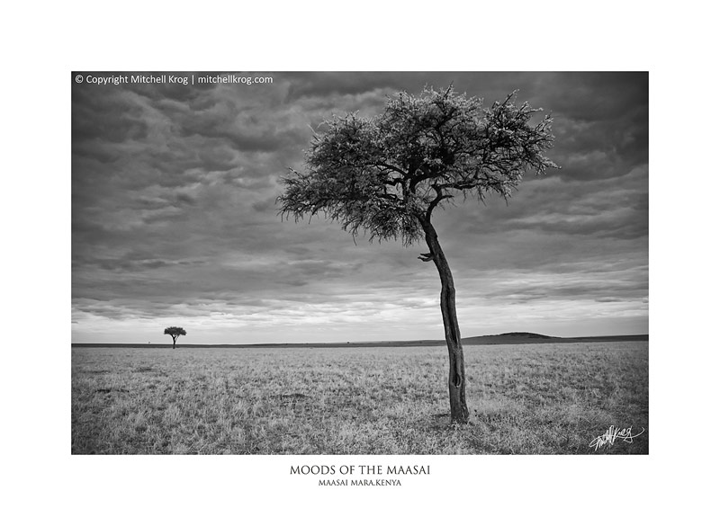 African Fine Art Landscape Monochrome Print Collection Series