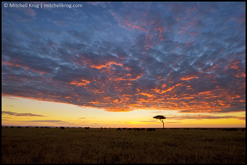 Beautiful Sunrise Landscape Photo in the Maasai Mara in Kenya