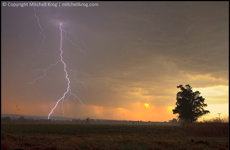 Photo of a dramatic sky with a massive lightning strike and lonesome tree captured at Sunset in Magaliesburg, South Africa.