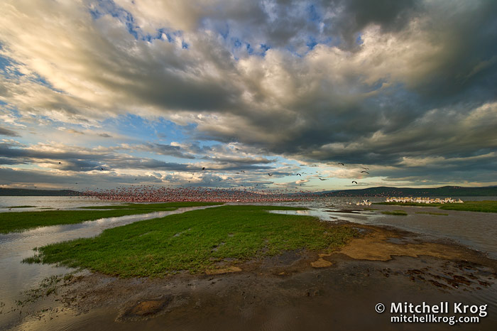 Lake Nakuru Kenya Landscape Photography