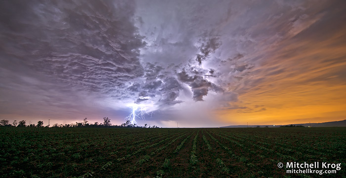Lightning Landscape Photography Sunflower Fields Night