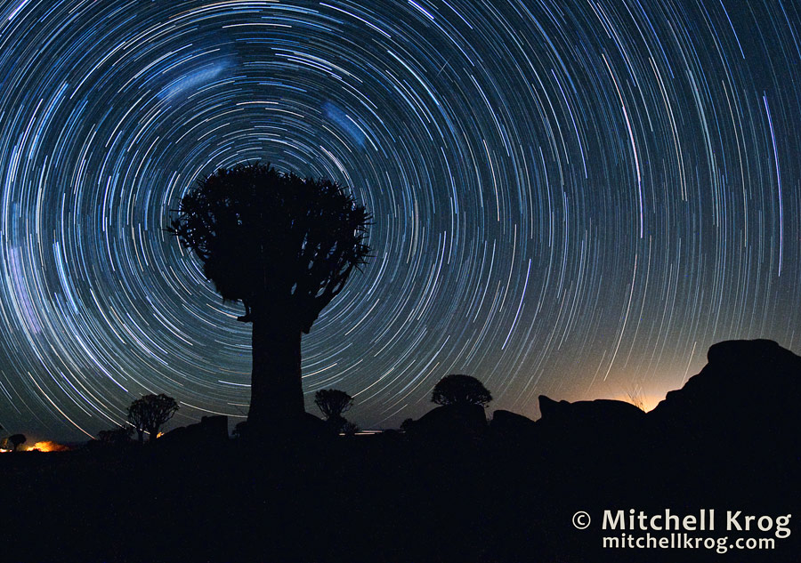Astrophotography Star Trails over Quiver Trees of Namibia