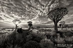 Fine Art Landscape Photography Prints